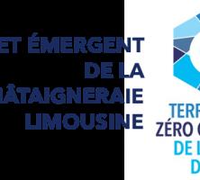 Logo_TZCLD